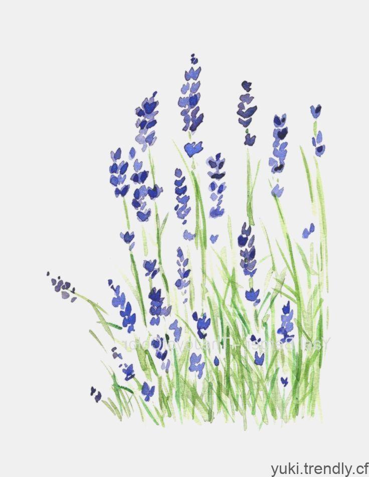 Lavendel Pflanze Kunst Druck Lavendel Aquarell Druck Lila Etsy