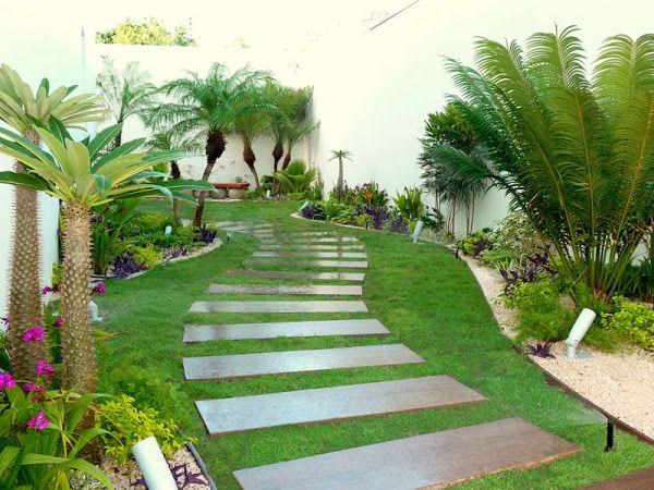 jardin tropical de lujo con sendero