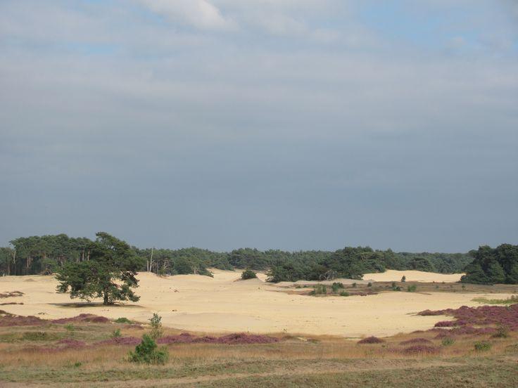 zandverstuiving, Wekeromse zand