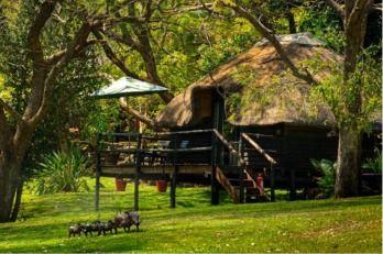 Kubu Lodge, Chobe, Botswana