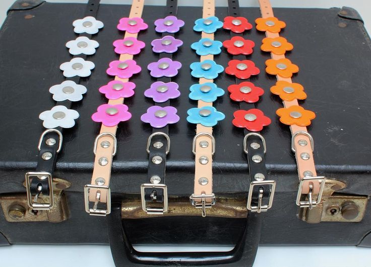 Which colour is your favourite? As seen in GLAMOUR MAGAZINE, our fabulous Mary Mini reflective dog collar! Use the code GLAMOUR at checkout for FREE DELIVERY! 🌸🌸 www.hausofdogs.co.uk