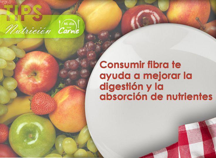 Consumir fibra te ayuda a mejorar la digestión y la absorción de nutrientes.