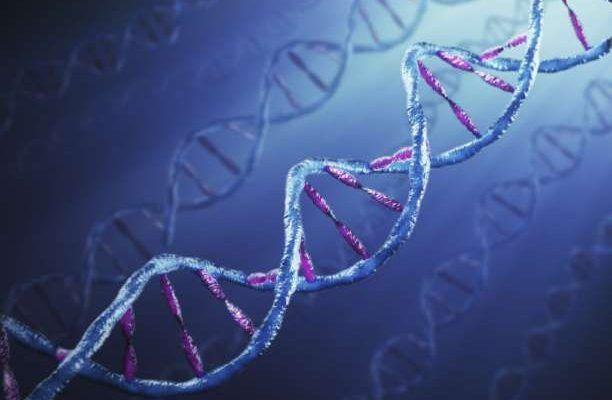 Επιστημονικά επιβεβαιωμένο: Η πρόθεσή μας μπορεί να αλλάξει το DNA μας! - Εναλλακτική Δράση