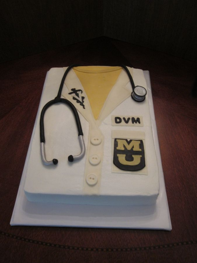 fondant cake for veterinarian | this cake for a friend who was receiving his…