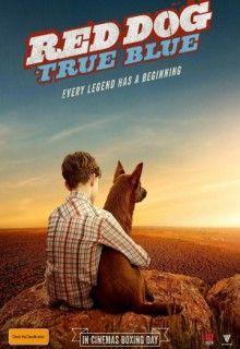 Рыжий: Вся правда (2016) http://hdlava.me/films/ryzhiy-vsya-pravda.html  «Рыжий: Вся правда» (Red Dog: True Blue) – это захватывающая экранизация известной австралийской истории. В центре происходящих событий – настоящая дружба, которая завязалась между провинциальным пареньком и доброй, весьма умной собакой. Мик – главный герой фильм – это мальчик, который со своим дедушкой переехал в глубинку Западной Австралии из города Перт. Обосновавшись на месте, мальчик однажды после сильного шторма…