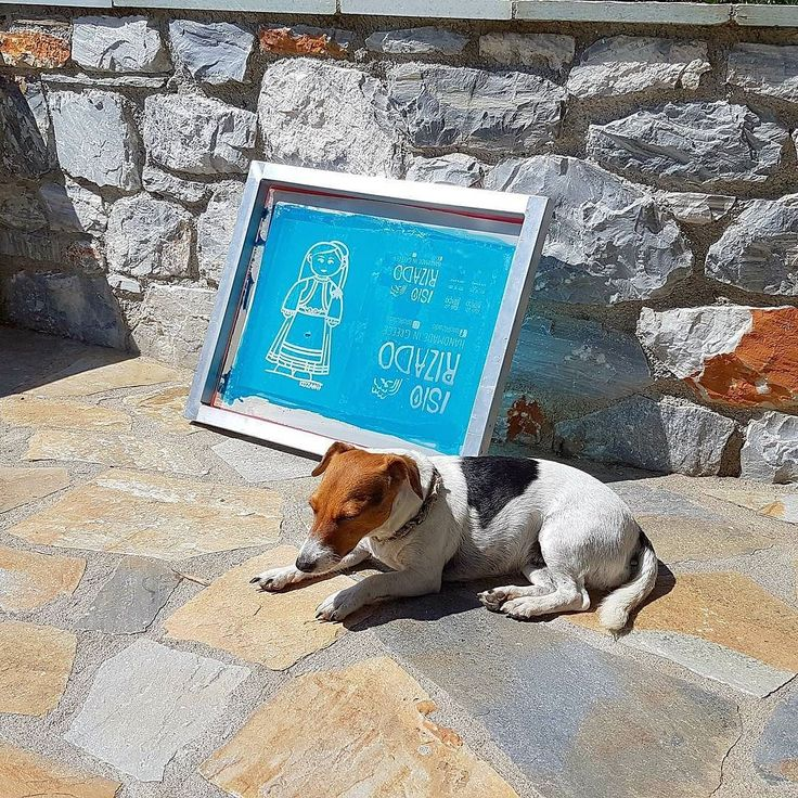 The screen and the guardian! . . #isiorizado #newproject #screeprinting #firstscreen #firsttry #madeingreece #doghelper #jackrussell