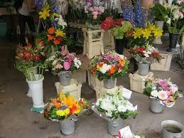 Florist Shops Near Me,  http://washingtondc.eventful.com/events/flower-shops-near-me-/E0-001-093287104-9@2016050916  Flower Shops Near Me,Flower Shop,Flower Shop Near Me,Flower Shops,Flowers Near Me,Floral Shops Near Me