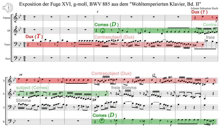 Das Formprinzip der Fuge BWV 885 Wohltemperierten Klavier Band 2