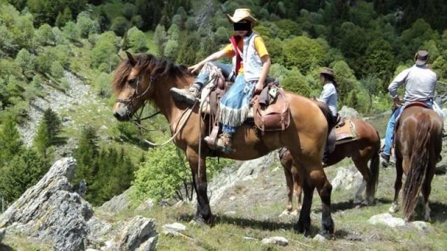 Cavalla da passeggiata  http://www.equirodi.it/annunci/cavalli-in-vendita/passeggiata-escursione.htm  Vendo cavalla affidabile al 100% ottima per passeggiate, trekking di piu' giorni e lavoro in piano. Brava e gestibile anche da principianti.