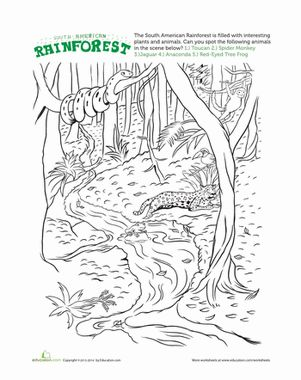 jungle animals worksheet colouring