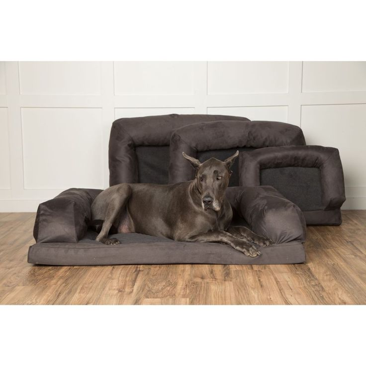 The 25 Best Orthopedic Dog Bed Ideas On Pinterest Pvc