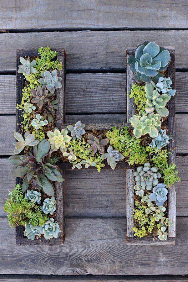 jardines verticales caseros - letra con suculentas