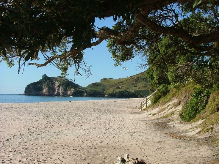 Hahei Beach http://www.aatravel.co.nz/101/info/Hahei-Beach_560.htm