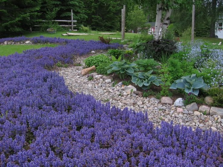 1011 best gardening images on pinterest