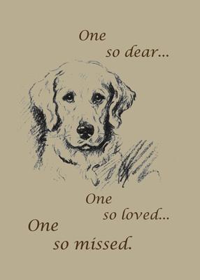 Dog Pet Sympathy <3