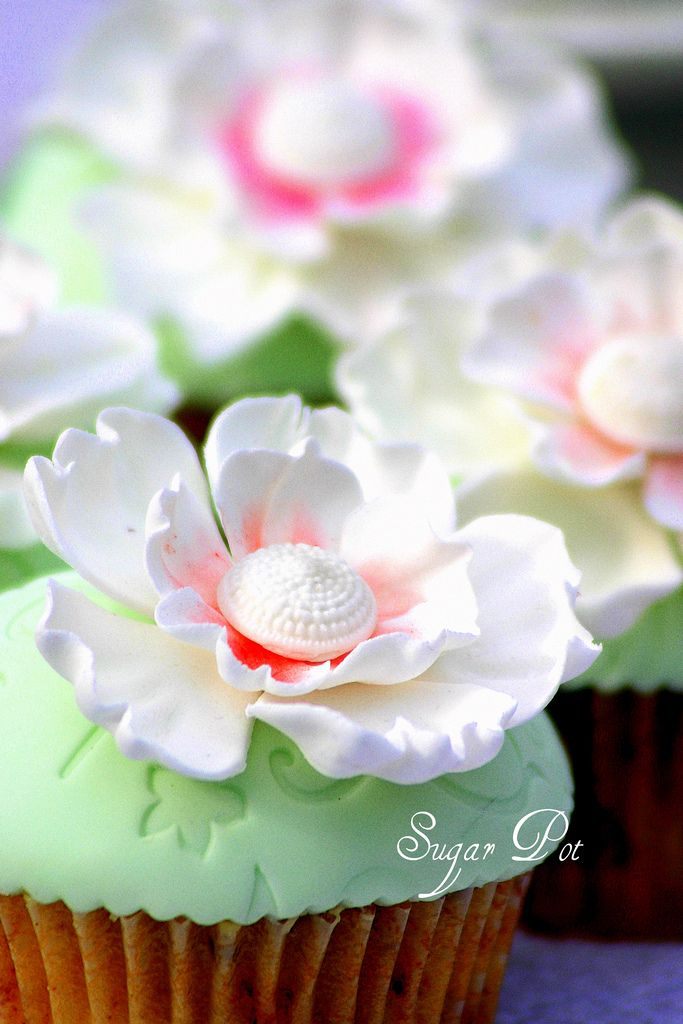 White flowers cupcakes