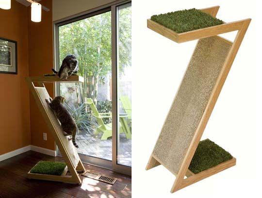 Arbre à chat avec pelouse