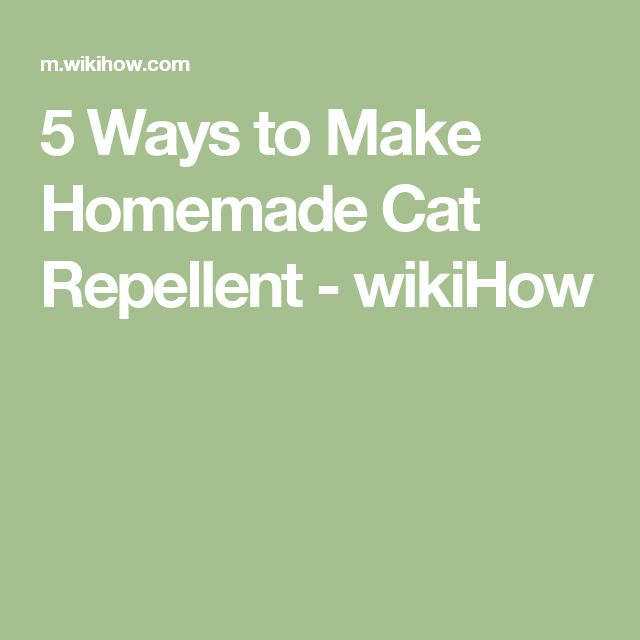 5 Ways to Make Homemade Cat Repellent - wikiHow