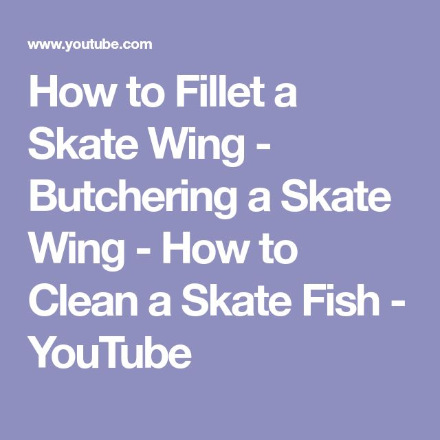 How to Fillet a Skate Wing - Butchering a Skate Wing - How to Clean a Skate Fish - YouTube