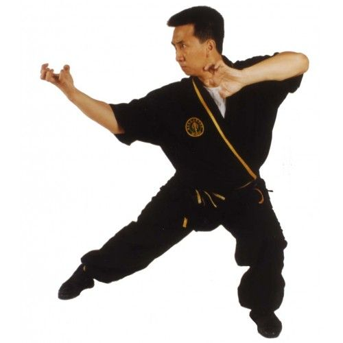 TIGER CLAW KUNG FU- MASTER TAK WAH ENG | The way of the ...