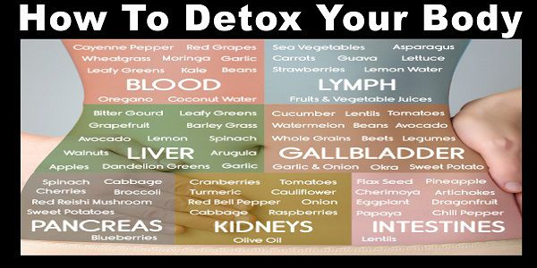 Detoxification Cleansing Your Organs