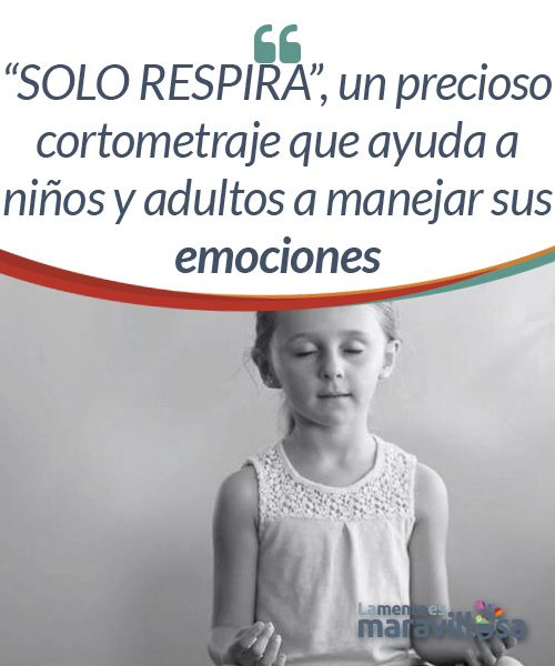 """SOLO RESPIRA"", un precioso cortometraje que ayuda a niños y adultos a manejar sus emociones La vida no solo nos duele a los adultos. Los niños también se estresan, se irritan o se sienten dolidos. Este cortometraje nos da una lección sobre esto, pues con frecuencia lo que ocurre es que castigamos la expresión y gestión de las emociones negativas desde la más tierna infancia."