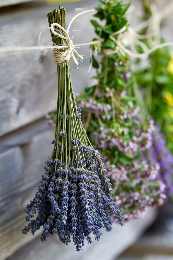 hanging dried flowers & herbs as decoration for one of our rustic