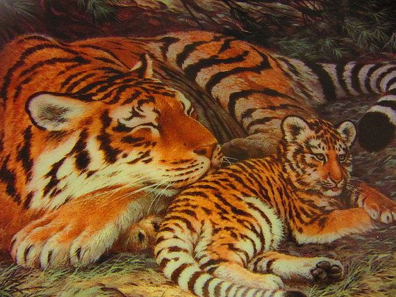 The Siberian Tiger & The Snow Leopard  by AntiquaCorner on Etsy