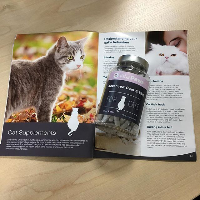 Premium quality vitamins and supplements for your cat 🐱🐾🐈 #VitaPaws #supplements #catsupplements #llysine #felinehealth #pethealth #catsofinstagram #cats #lovecats #catlovers