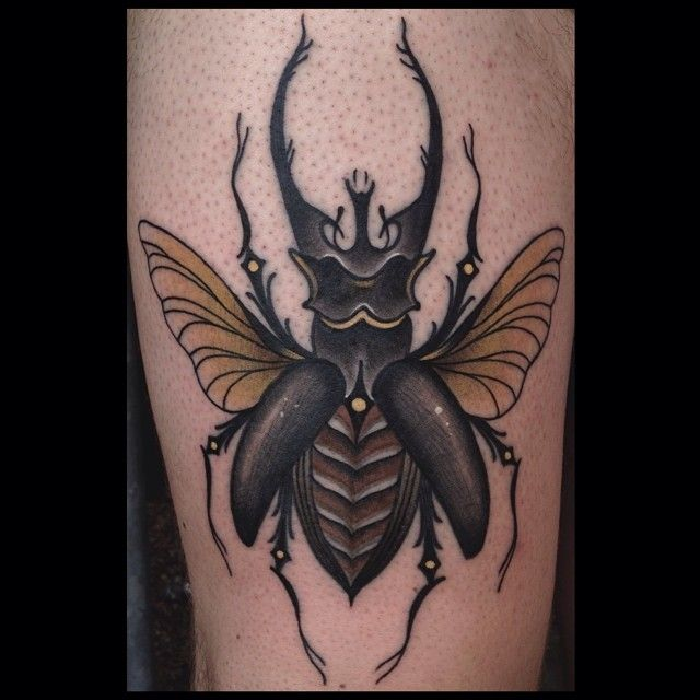 Neotraditional Stag Beetle By Marcelina Urbańska At