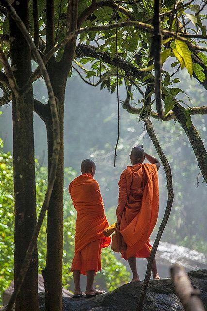 Phnom Kulen National Park #35 by foto_morgana on Flickr.
