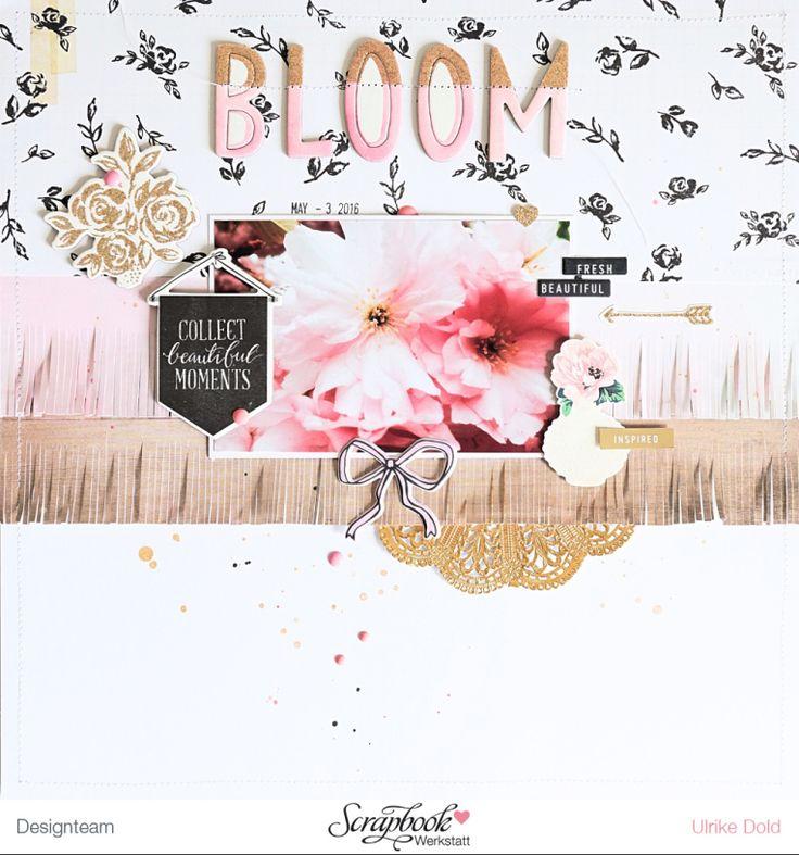 Bloom                                                       …