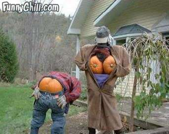 funny halloween pumpkins - Funny Halloween Decorations
