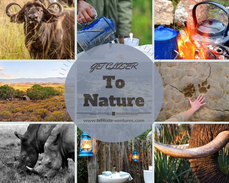 Up Close and Personal #WalkingSafari #SouthAfrica  #LatitudeVentures #TailorMadeTravel