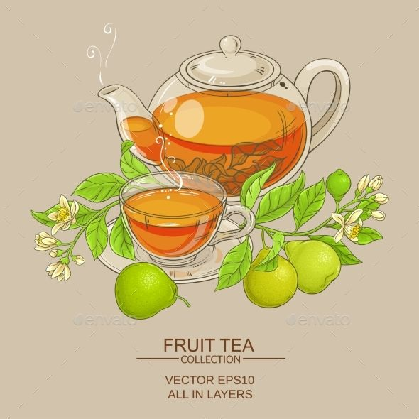 Bergamot Tea Vector Illustration - Vector EPS