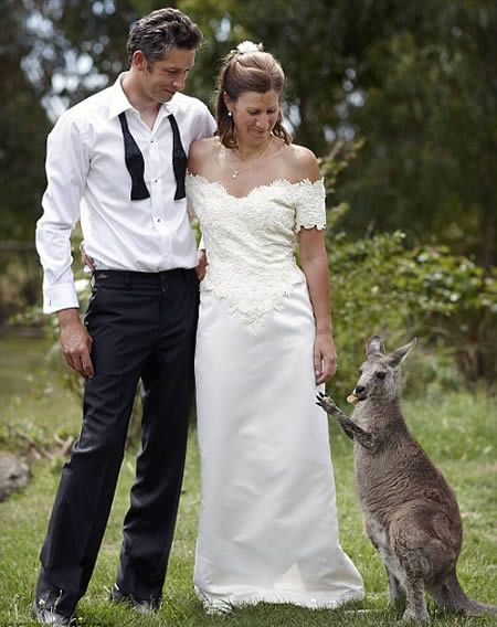 12 Funniest Bridesmaids (funny bridesmaids, cool bridesmaids) - ODDEE