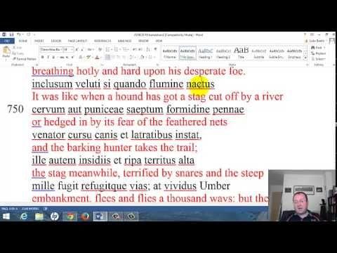 ▶ 2014 Latin GCSE 4: Aeneid 12 Video 3 - YouTube