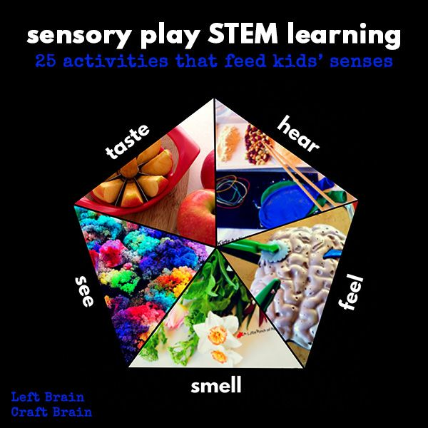 Somatic Senses Education: 17+ Images About Fun STEM Activities For Kids On Pinterest