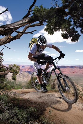 Orbea mountain bike. Takes a beating and keeps on ticking...