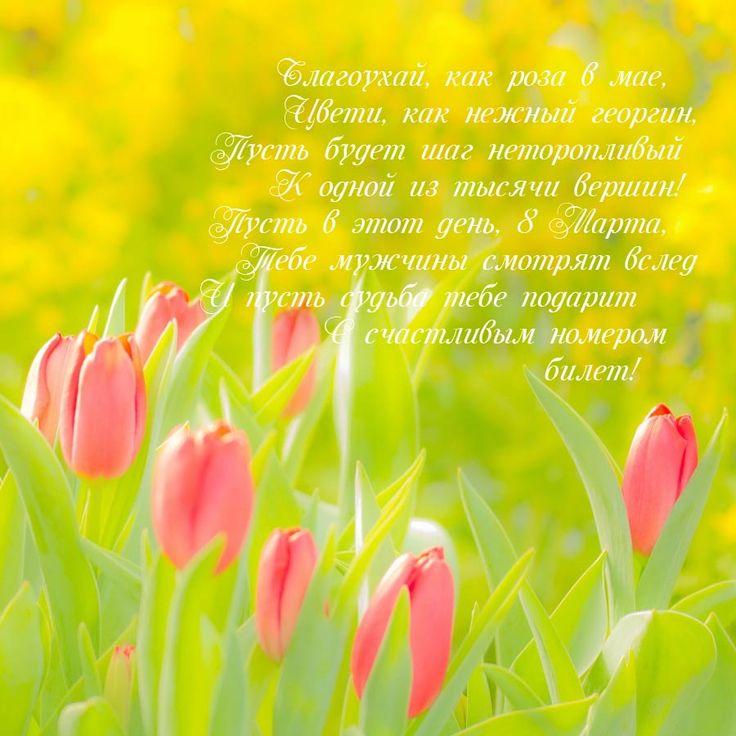 Тюльпаны и стихи