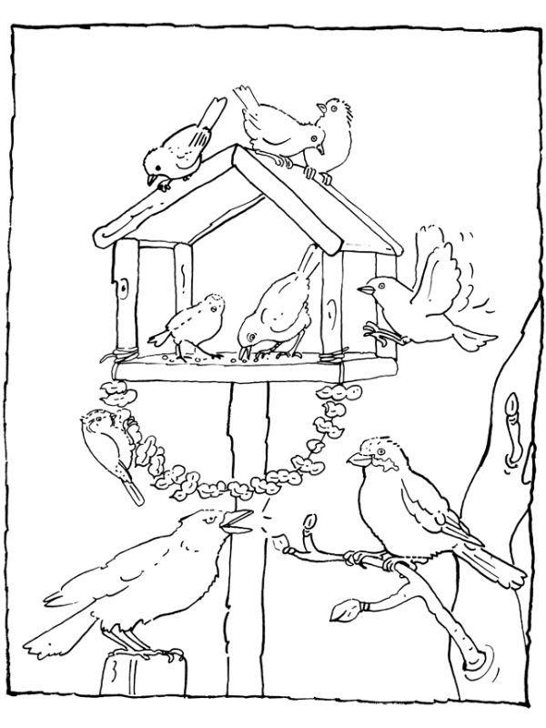 vögel basteln kinder winter in 2020  ausmalbilder vögel