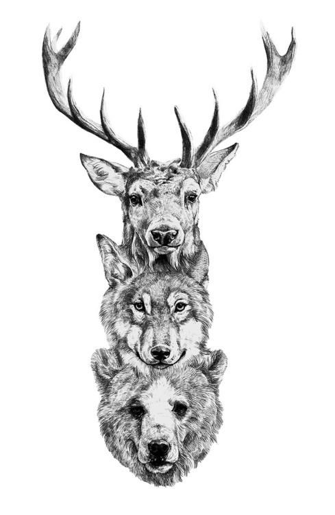 Animal Totem, nice realistic illustration style. via Mexican Fireworks.