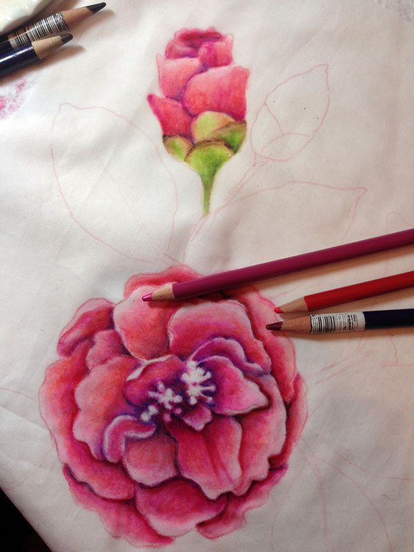 Come Join Me As I Teach You How To Use Colored Pencils Inktense
