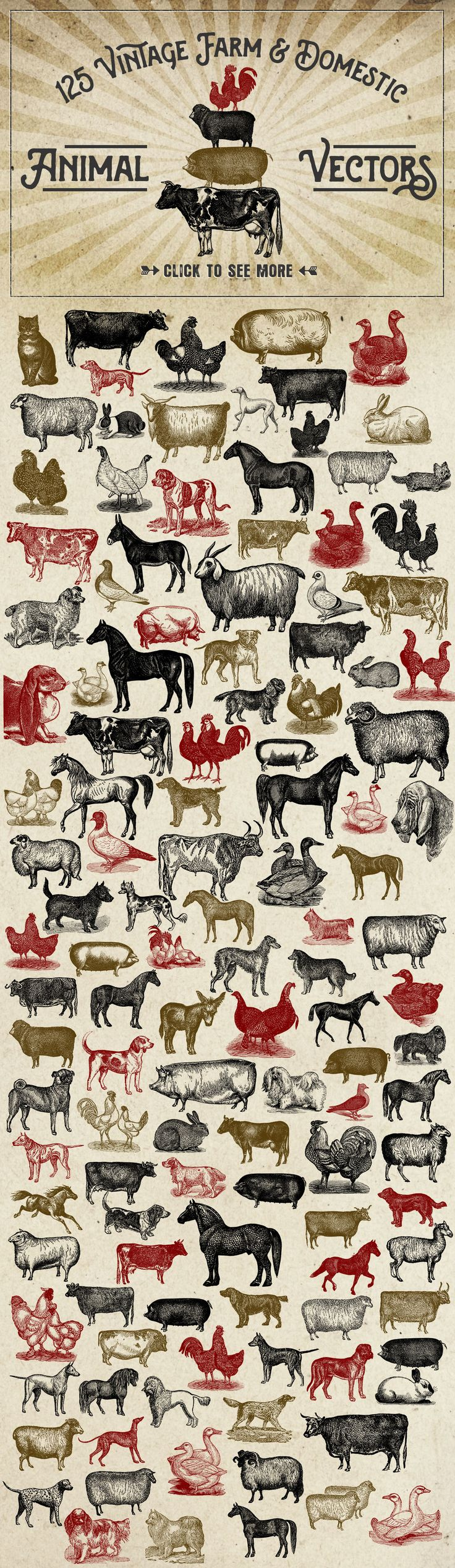 Vintage Farm Animal Vector Graphics by Eclectic Anthology on Creative Market