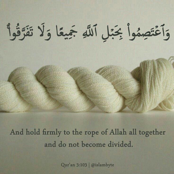 Quran  Islam Muslim