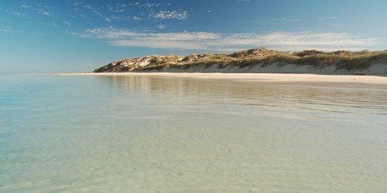 Coral Bay, Australia Occidentale: 123 recensioni, articoli e 52 foto di Coral Bay, n.173 su TripAdvisor tra 1.274 attrazioni a Australia Occidentale.