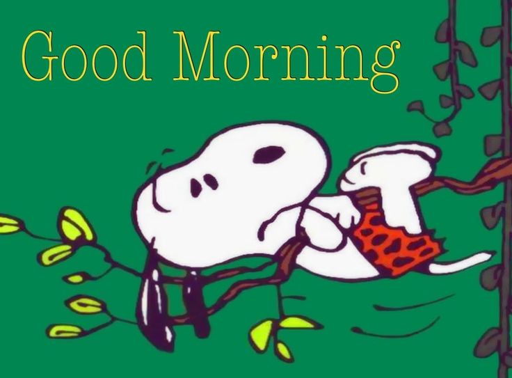 Good Morning Snoopy Wednesday : Best snoopy good morning images on pinterest beagle