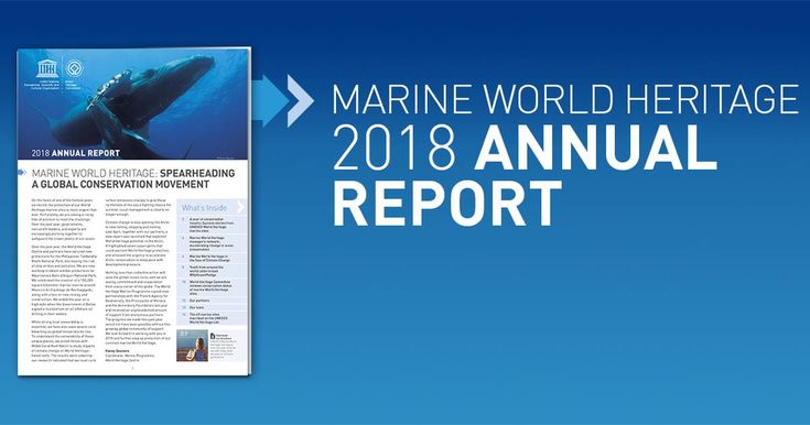 Spearheading a global conservation movement: Marine World Heritage 2018 annual report