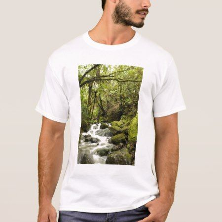 Coromandel Peninsula, North Island, New Zealand. T-Shirt - tap to personalize and get yours