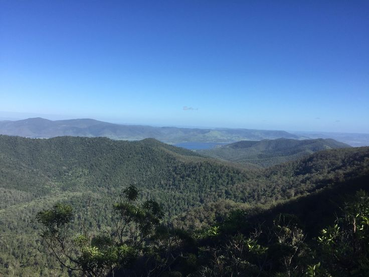 The Somerset Trail Mount Mee Queensland Australia. #hiking #camping #outdoors #nature #travel #backpacking #adventure #marmot #outdoor #mountains #photography